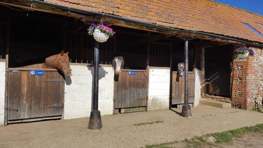 North Norfolk Riding Centre